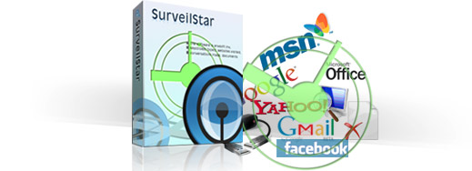 SurveilStar Basic IT Structure